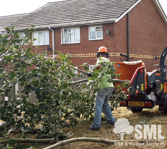 Site Clearance - SML Tree & Hedge Services